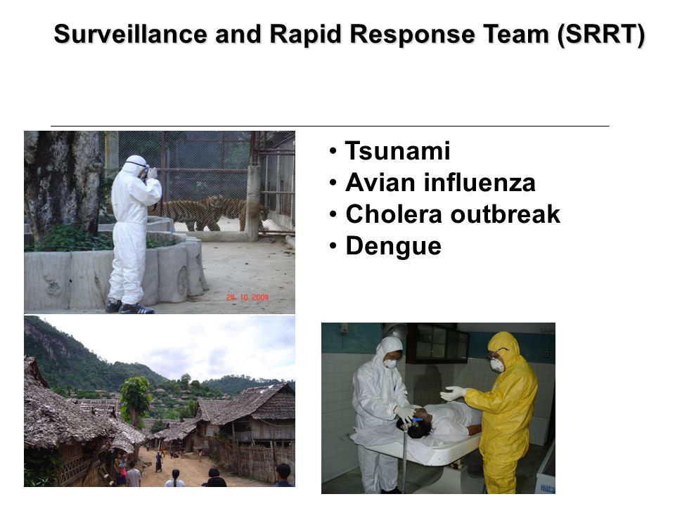 Surveillance and Rapid Response Team (SRRT) Tsunami Avian influenza Cholera outbreak Dengue