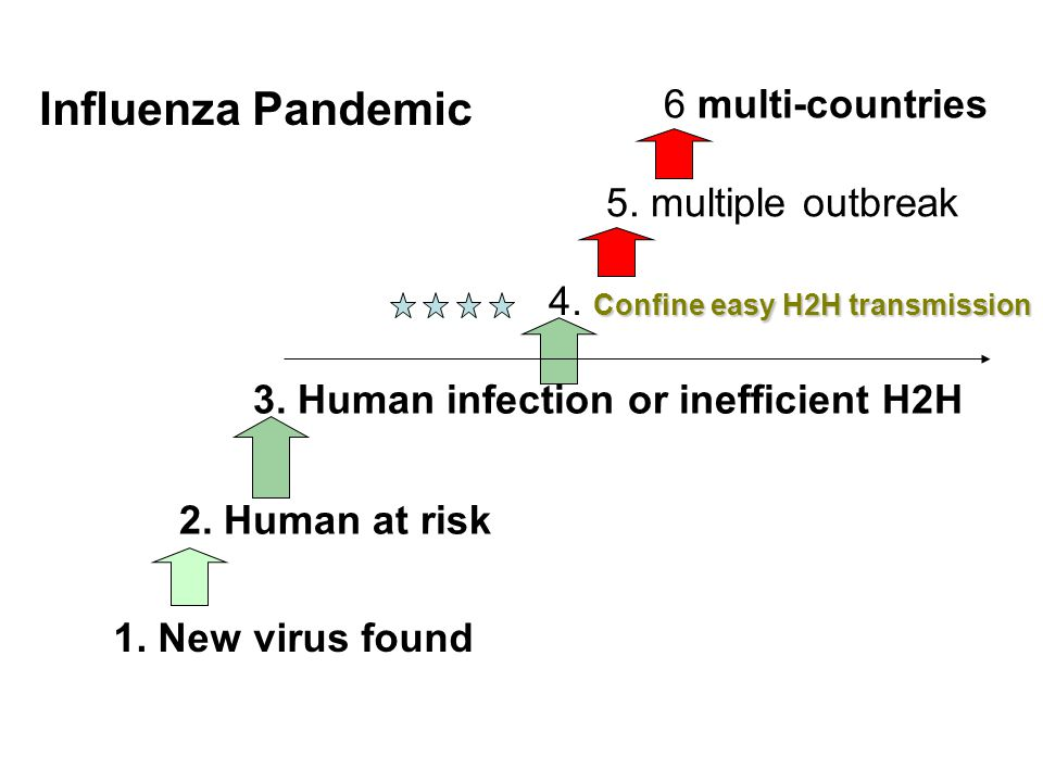 1. New virus found 2. Human at risk 3. Human infection or inefficient H2H Confine easy H2H transmission 4. Confine easy H2H transmission 5. multiple o