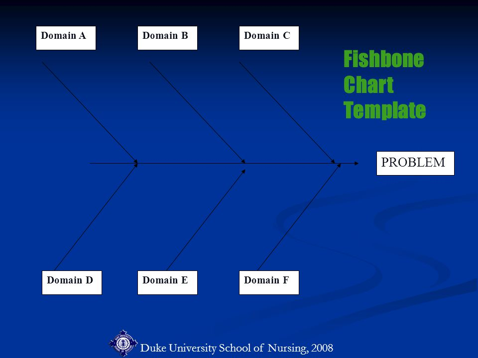 Duke University School of Nursing, 2008 PROBLEM Domain ADomain BDomain C Domain EDomain FDomain D Fishbone Chart Template