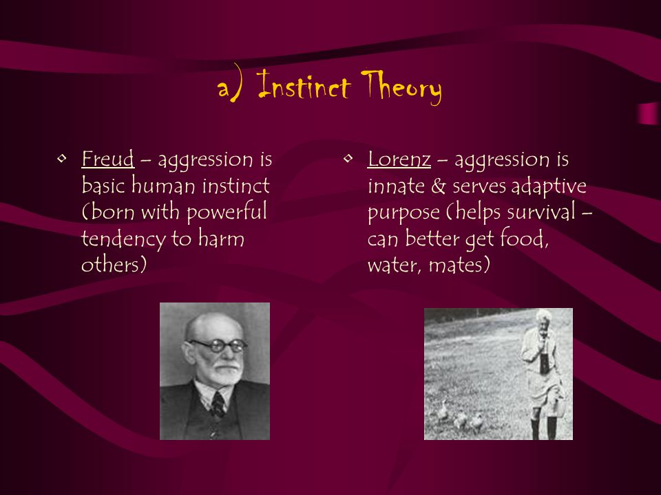a) Instinct Theory Freud – aggression is basic human instinct (born with powerful tendency to harm others) Lorenz – aggression is innate & serves adaptive purpose (helps survival – can better get food, water, mates)