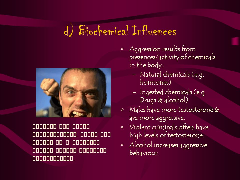 d) Biochemical Influences Aggression results from presences/activity of chemicals in the body: –Natural chemicals (e.g.