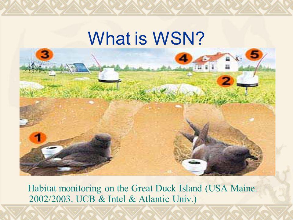 What is WSN? Habitat monitoring on the Great Duck Island (USA Maine. 2002/2003. UCB & Intel & Atlantic Univ.)