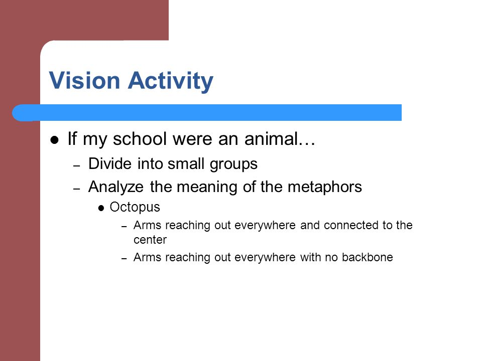 Vision Activity If my school were an animal… – Divide into small groups – Analyze the meaning of the metaphors Octopus – Arms reaching out everywhere and connected to the center – Arms reaching out everywhere with no backbone