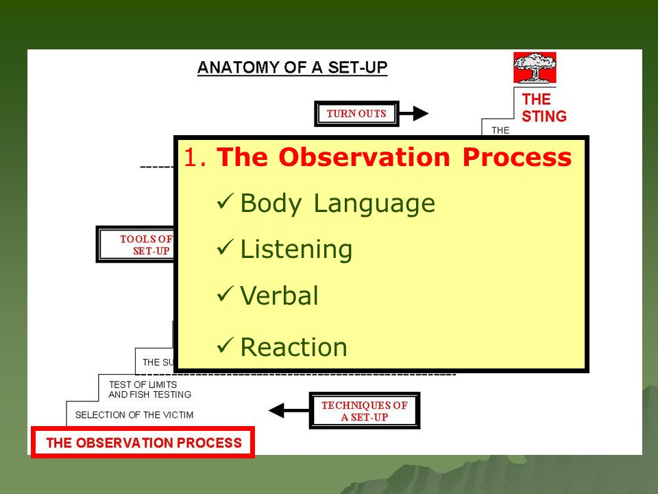1. The Observation Process Body Language Listening Verbal Reaction