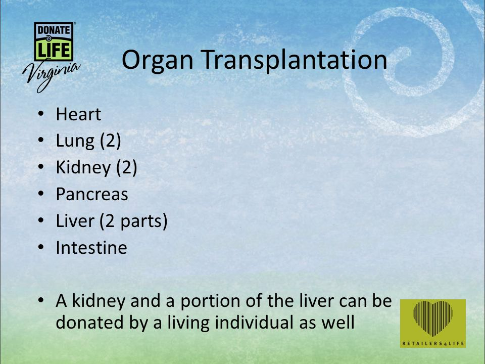 Organ Transplantation Heart Lung (2) Kidney (2) Pancreas Liver (2 parts) Intestine A kidney and a portion of the liver can be donated by a living individual as well