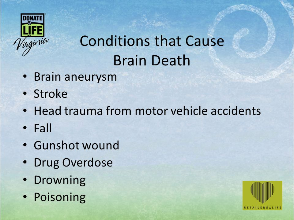 Conditions that Cause Brain Death Brain aneurysm Stroke Head trauma from motor vehicle accidents Fall Gunshot wound Drug Overdose Drowning Poisoning