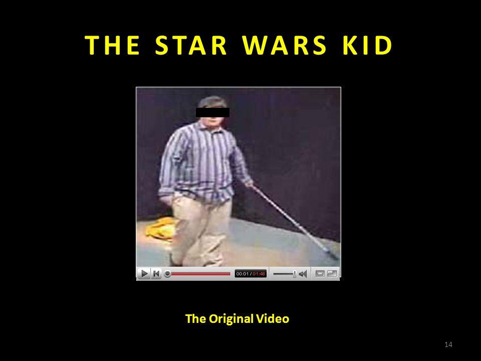 THE STAR WARS KID The Original Video 14