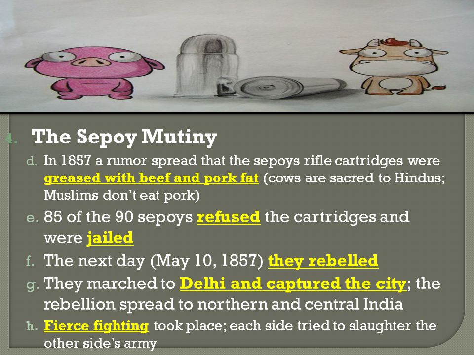 4. The Sepoy Mutiny d. In 1857 a rumor spread that the sepoys rifle cartridges were greased with beef and pork fat (cows are sacred to Hindus; Muslims
