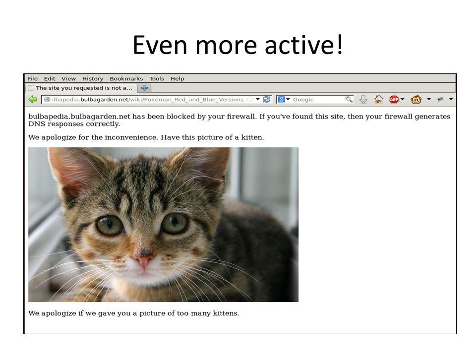 Even more active! deny dns DNS Reqest DNS Response to 54.173.224.150 intext