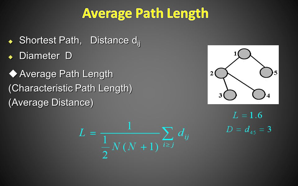  Shortest Path, Distance d ij  Diameter D  Average Path Length (Characteristic Path Length) (Average Distance)