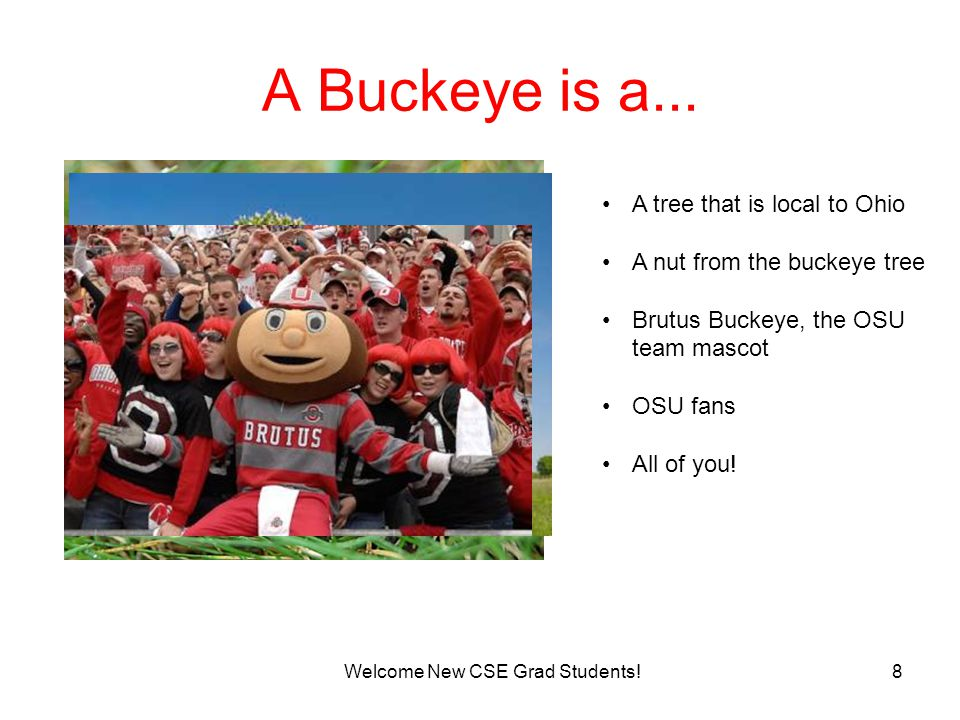 8 A Buckeye is a... Welcome New CSE Grad Students.