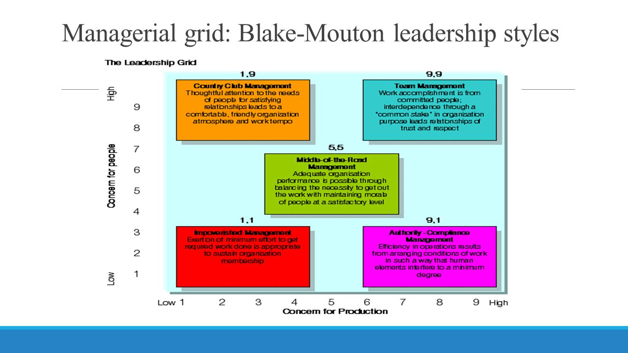 Managerial grid: Blake-Mouton leadership styles