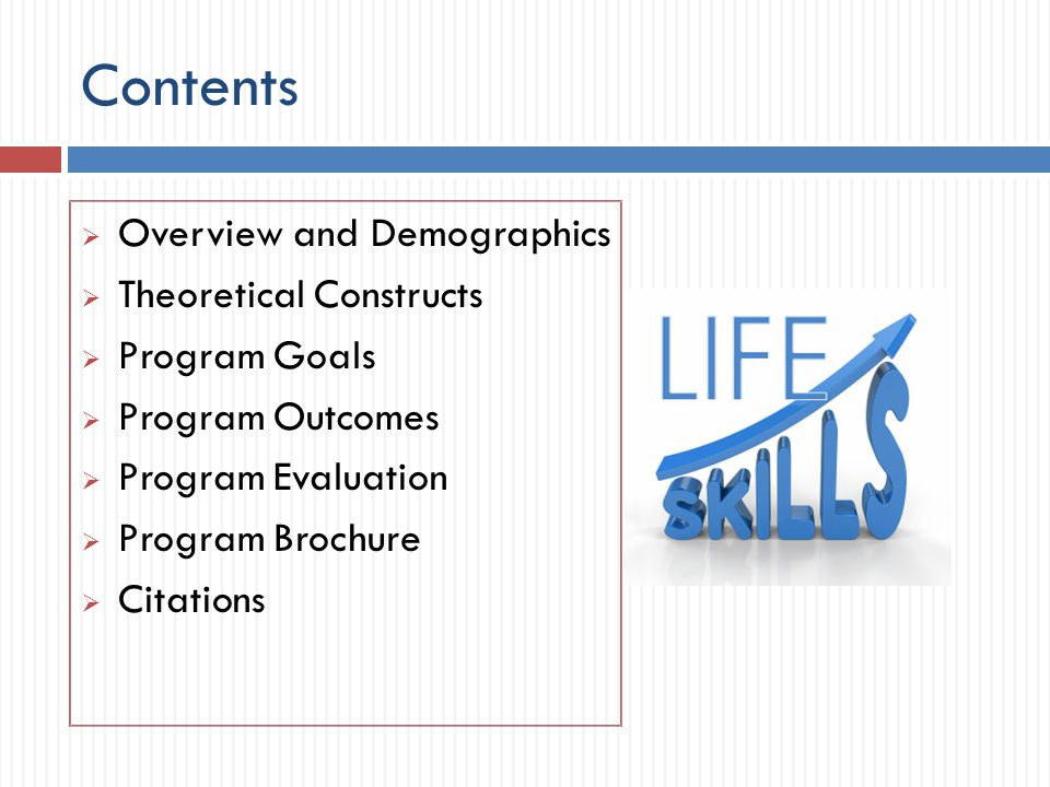 Contents  Overview and Demographics  Theoretical Constructs  Program Goals  Program Outcomes  Program Evaluation  Program Brochure  Citations