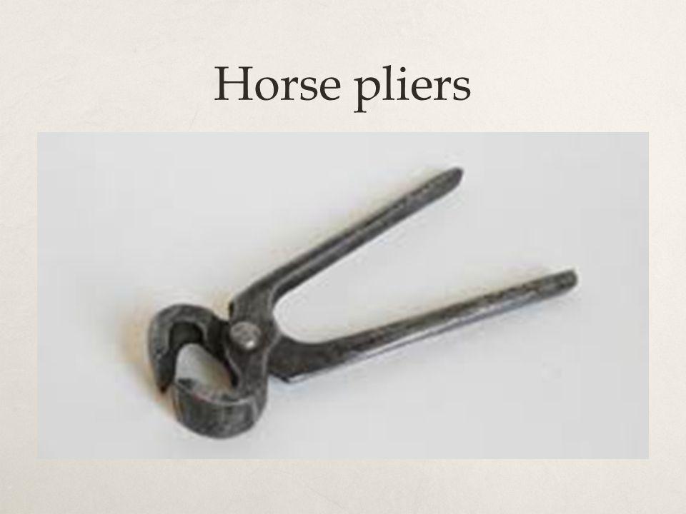 Horse pliers