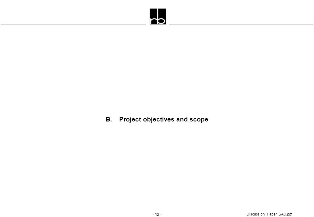 - 12 - Discussion_Paper_SAG.ppt B. Project objectives and scope