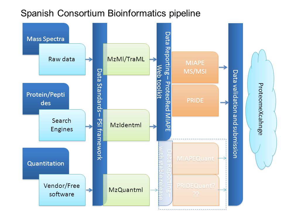 Data Standards – PSI framework Spanish Consortium Bioinformatics pipeline Mass Spectra Raw data MzMl/TraML Protein/Pepti des Search Engines MzIdentml Quantitation Vendor/Free software MzQuantml Data Reporting – ProteoRed MIAPE Web toolkit MIAPE MS/MSI PRIDE Data Reporting – with stable release MIAPEQuant PRIDEQuant.