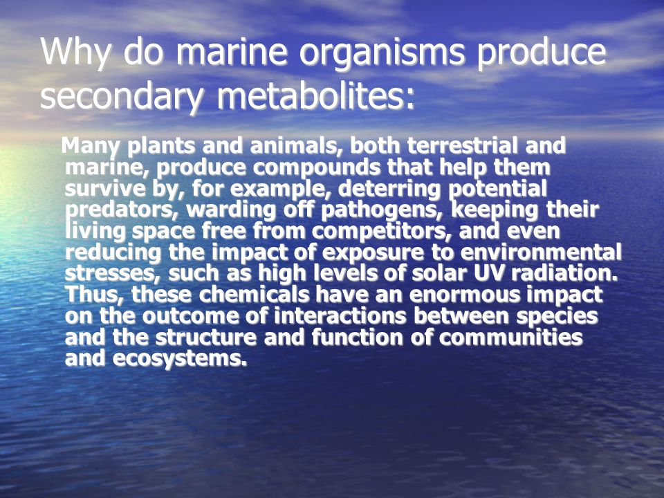 Why do marine organisms produce secondary metabolites: Many plants and animals, both terrestrial and marine, produce compounds that help them survive