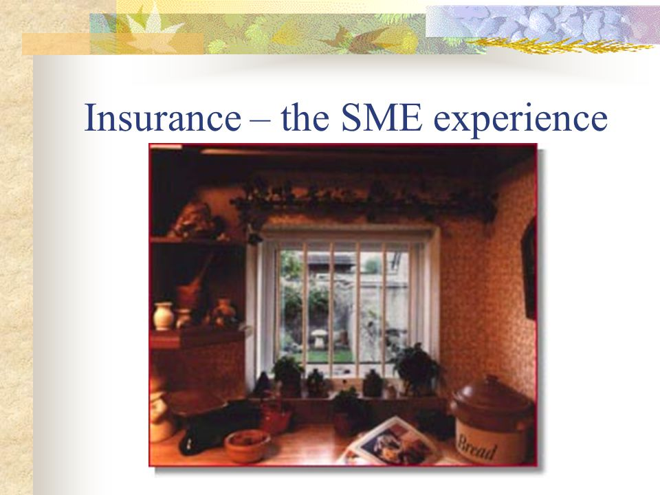 Insurance – the SME experience