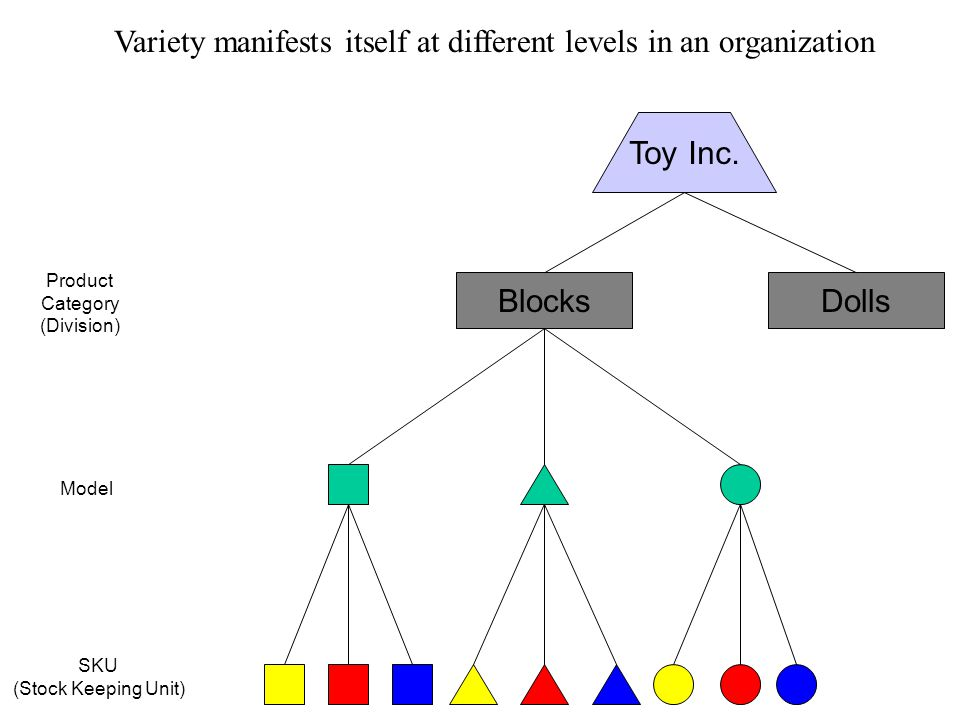 Product variety conveys competitive position