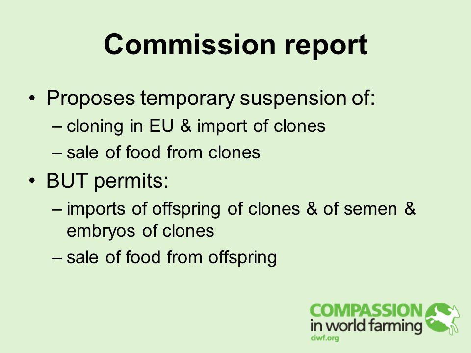 Commission report Proposes temporary suspension of: –cloning in EU & import of clones –sale of food from clones BUT permits: –imports of offspring of clones & of semen & embryos of clones –sale of food from offspring