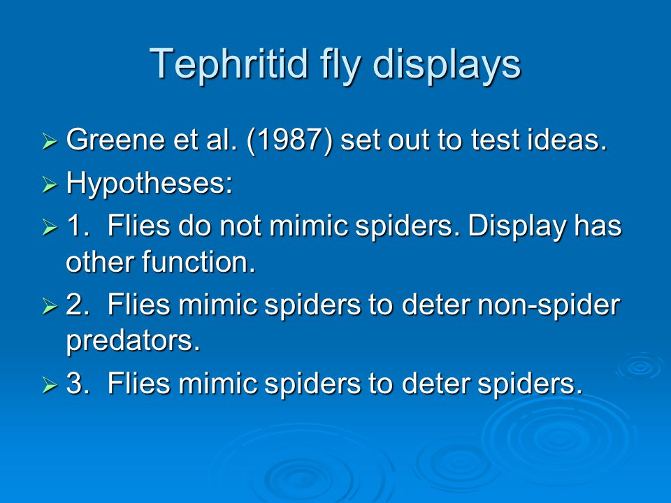 Tephritid fly displays  Greene et al. (1987) set out to test ideas.