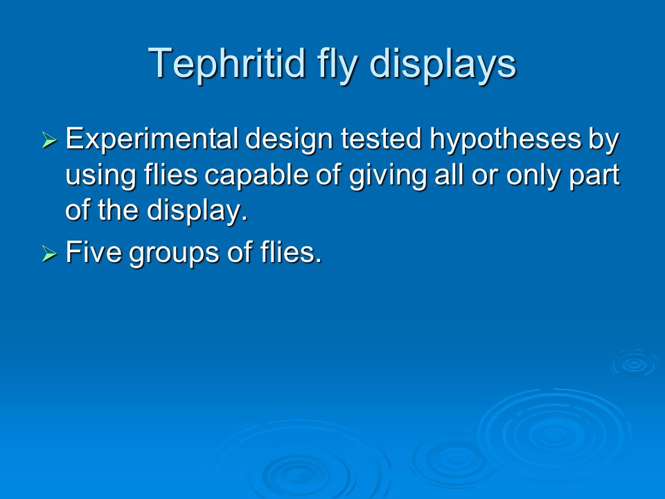 Tephritid fly displays  Experimental design tested hypotheses by using flies capable of giving all or only part of the display.  Five groups of flie