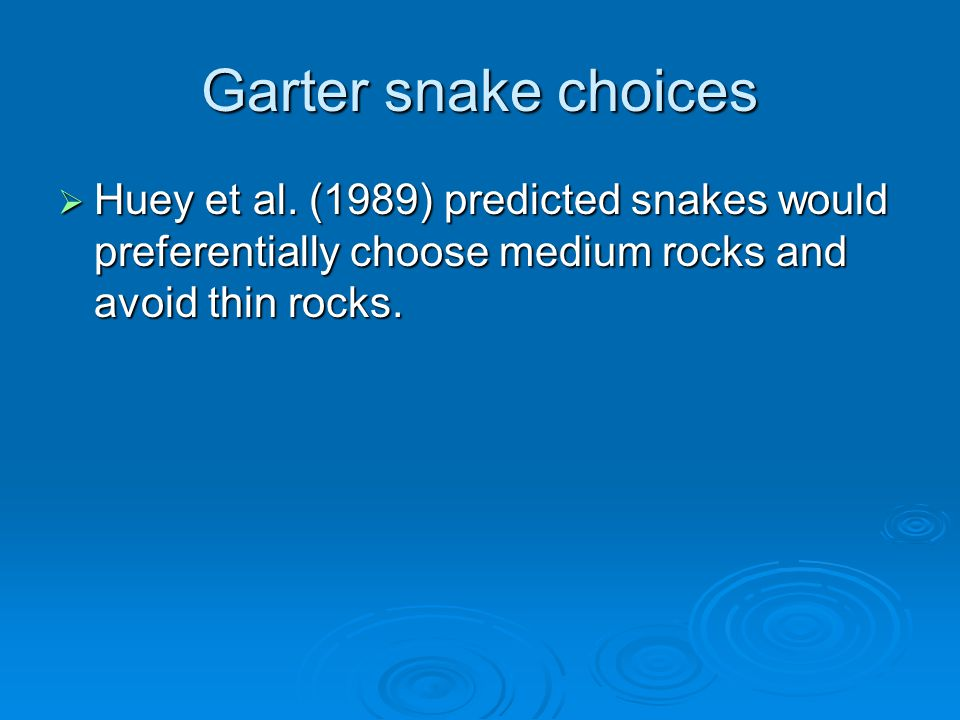 Garter snake choices  Huey et al. (1989) predicted snakes would preferentially choose medium rocks and avoid thin rocks.