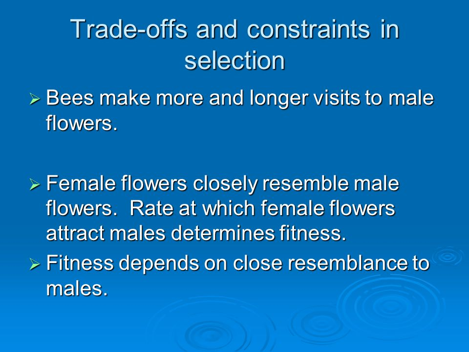 Trade-offs and constraints in selection  Bees make more and longer visits to male flowers.  Female flowers closely resemble male flowers. Rate at wh
