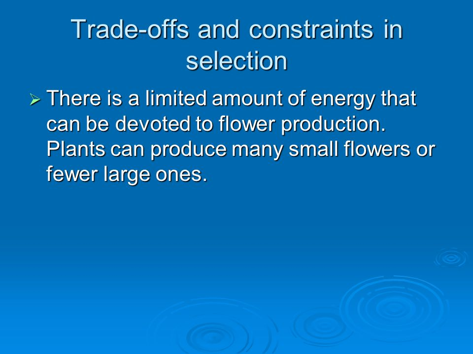 Trade-offs and constraints in selection  There is a limited amount of energy that can be devoted to flower production. Plants can produce many small