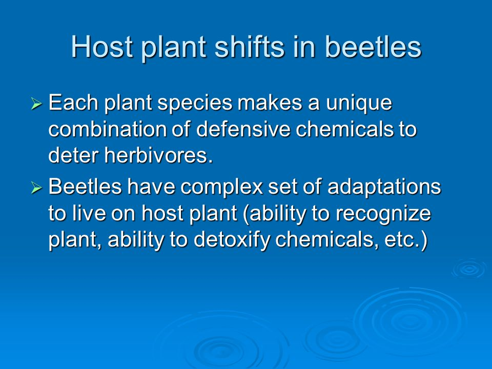 Host plant shifts in beetles  Each plant species makes a unique combination of defensive chemicals to deter herbivores.