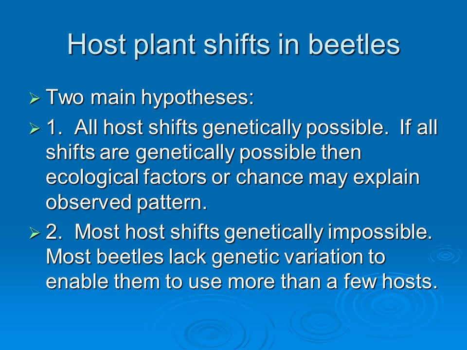 Host plant shifts in beetles  Two main hypotheses:  1.