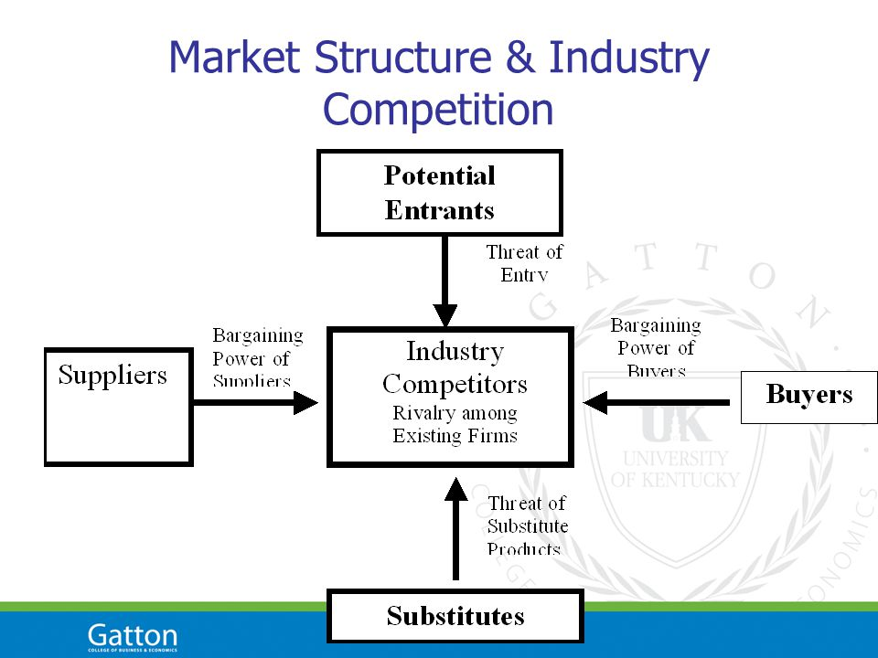 Market Structure & Industry Competition