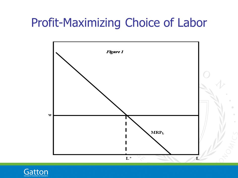 Profit-Maximizing Choice of Labor