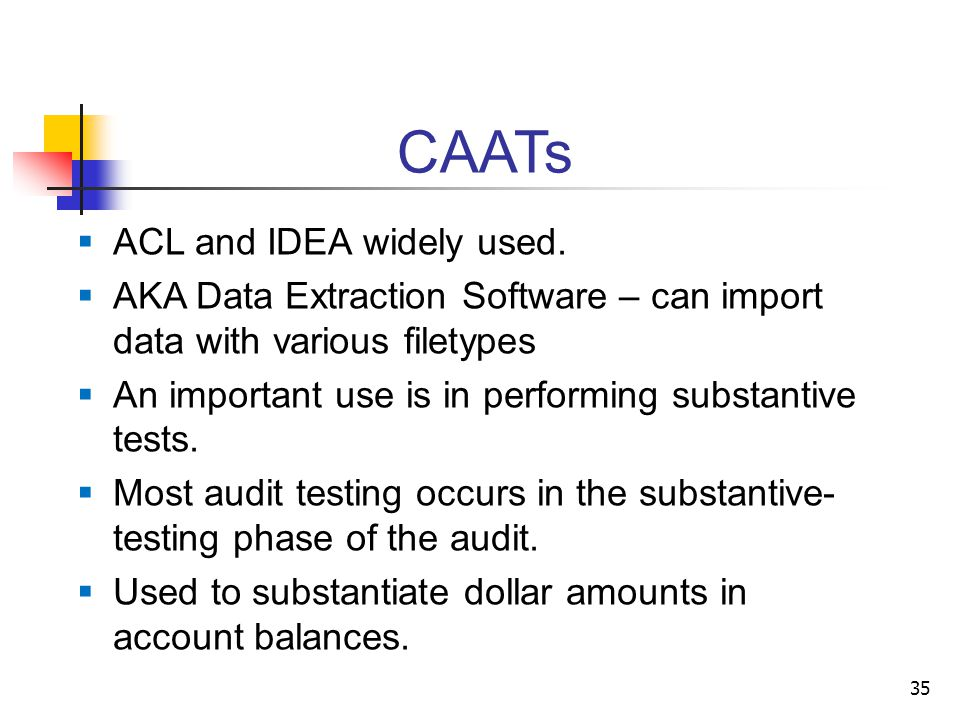 CAATs  ACL and IDEA widely used.