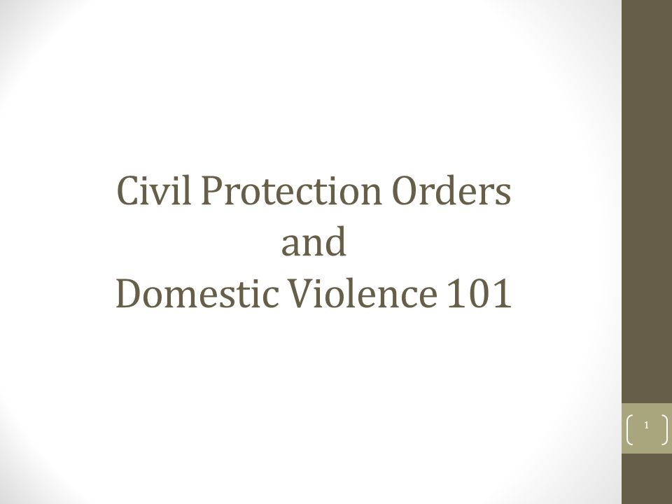 Civil Protection Orders and Domestic Violence 101 1