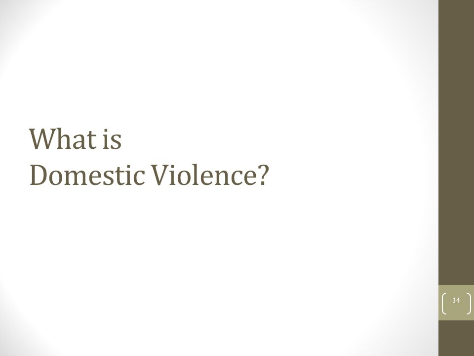 What is Domestic Violence? 14