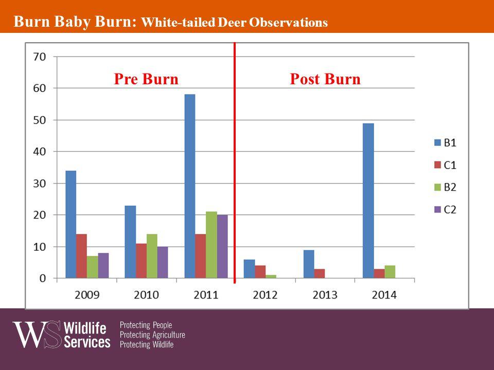 Pre BurnPost Burn Burn Baby Burn: White-tailed Deer Observations