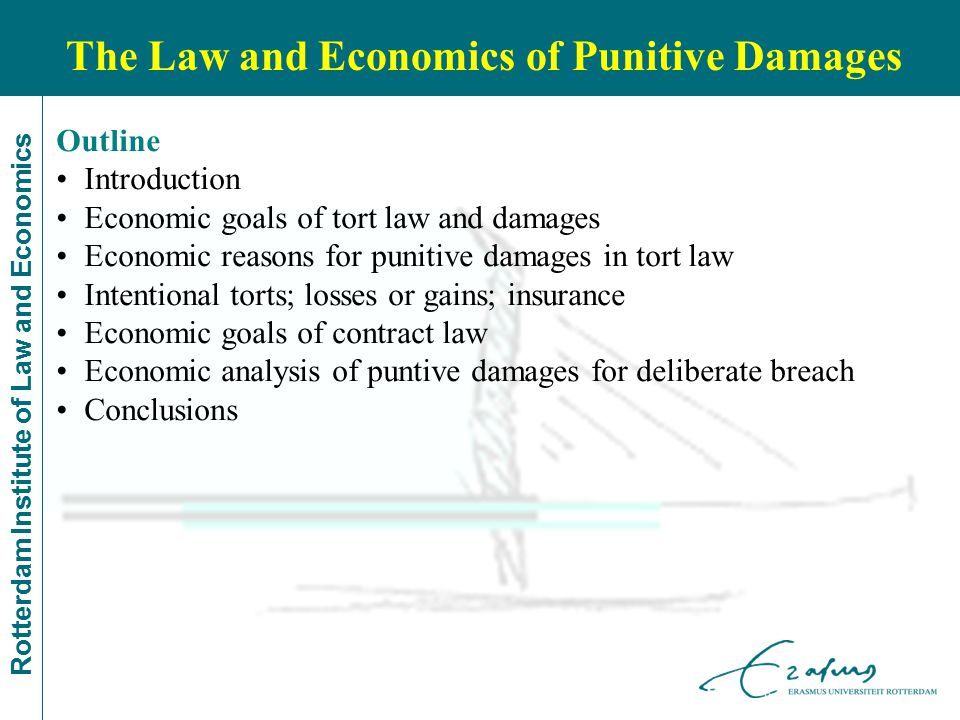 Rotterdam Institute of Law and Economics Outline Introduction Economic goals of tort law and damages Economic reasons for punitive damages in tort law