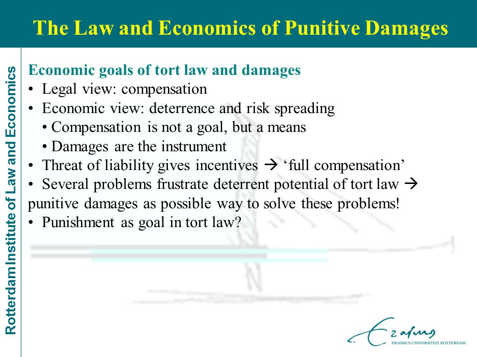 Rotterdam Institute of Law and Economics Economic goals of tort law and damages Legal view: compensation Economic view: deterrence and risk spreading Compensation is not a goal, but a means Damages are the instrument Threat of liability gives incentives  'full compensation' Several problems frustrate deterrent potential of tort law  punitive damages as possible way to solve these problems.