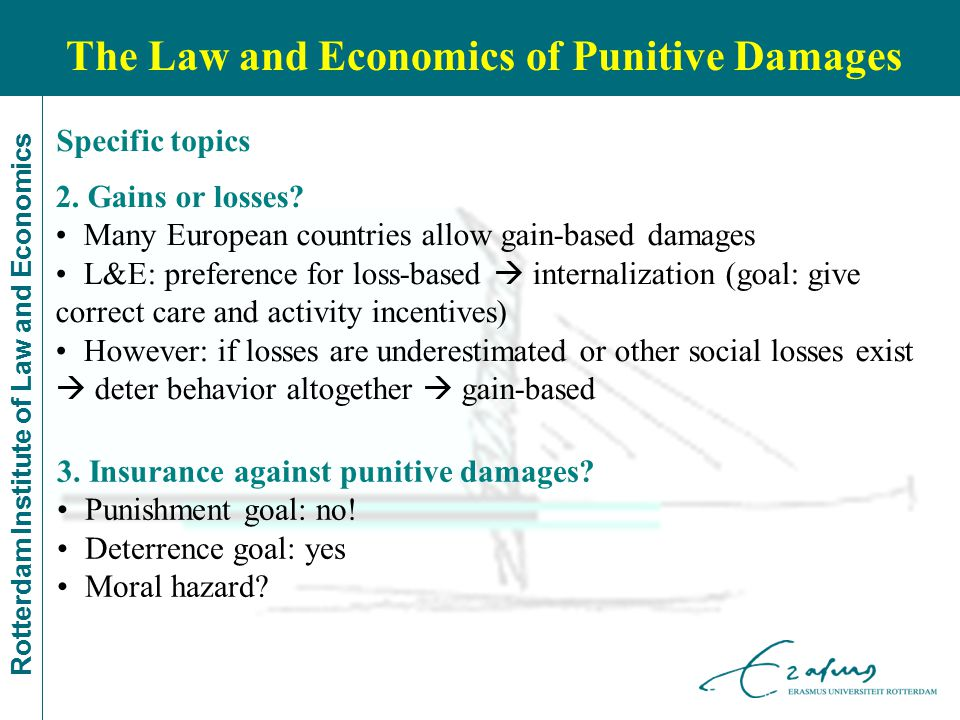 Rotterdam Institute of Law and Economics The Law and Economics of Punitive Damages 3.
