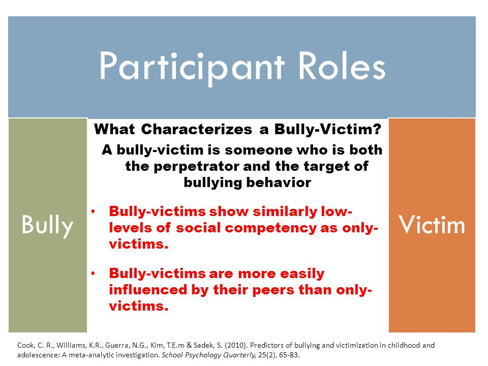 What Characterizes a Bully-Victim.