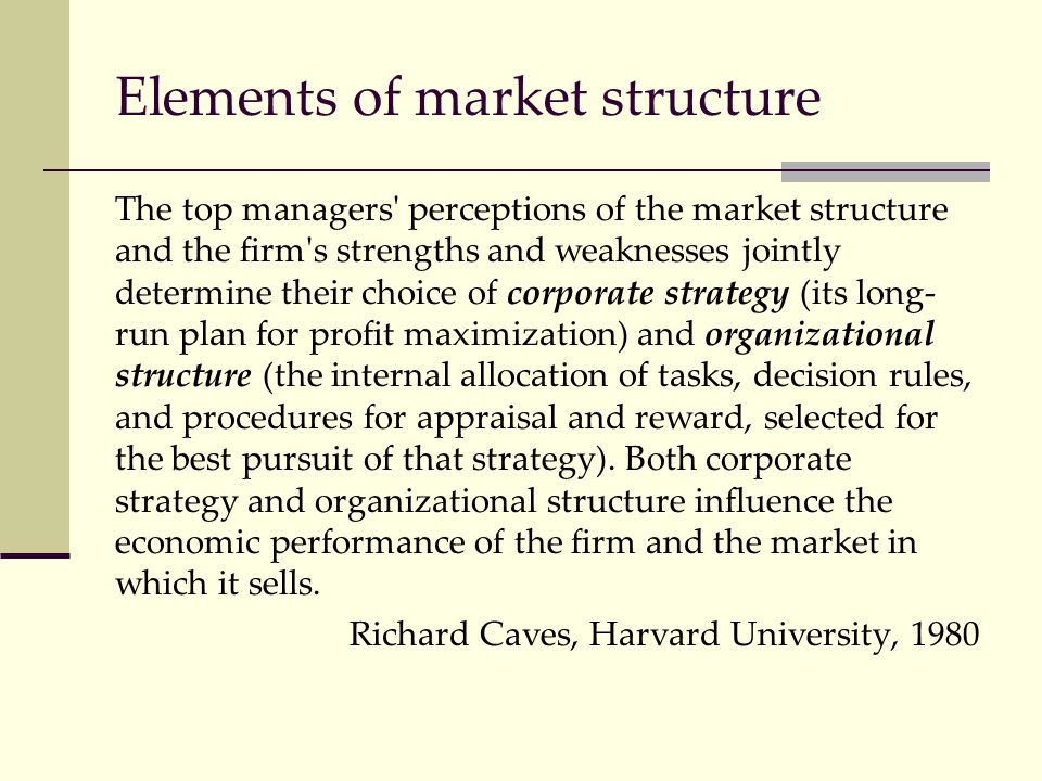 Elements of market structure The top managers' perceptions of the market structure and the firm's strengths and weaknesses jointly determine their cho