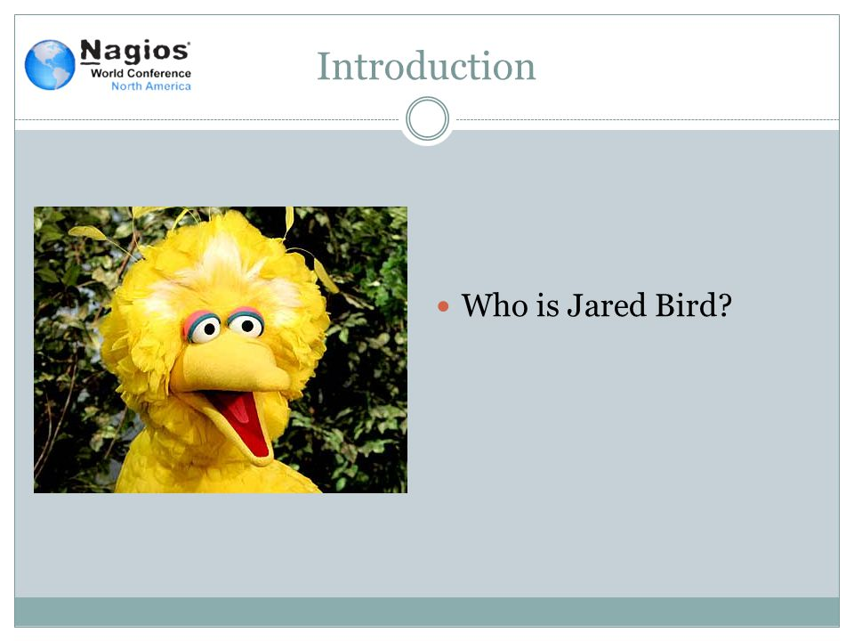Introduction Who is Jared Bird?