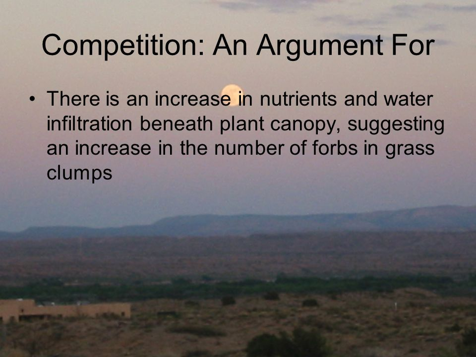 Competition: An Argument For There is an increase in nutrients and water infiltration beneath plant canopy, suggesting an increase in the number of fo