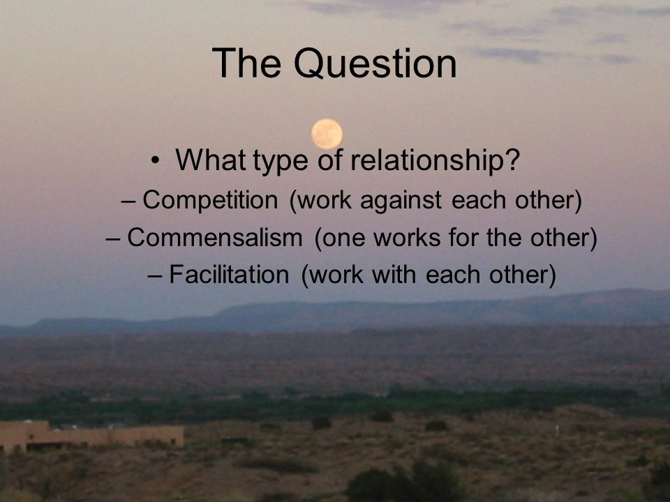 The Question What type of relationship? –Competition (work against each other) –Commensalism (one works for the other) –Facilitation (work with each o