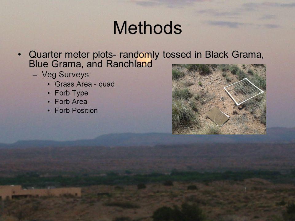 Methods Quarter meter plots- randomly tossed in Black Grama, Blue Grama, and Ranchland –Veg Surveys: Grass Area - quad Forb Type Forb Area Forb Position