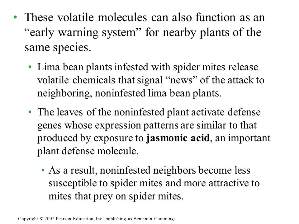 These volatile molecules can also function as an early warning system for nearby plants of the same species.