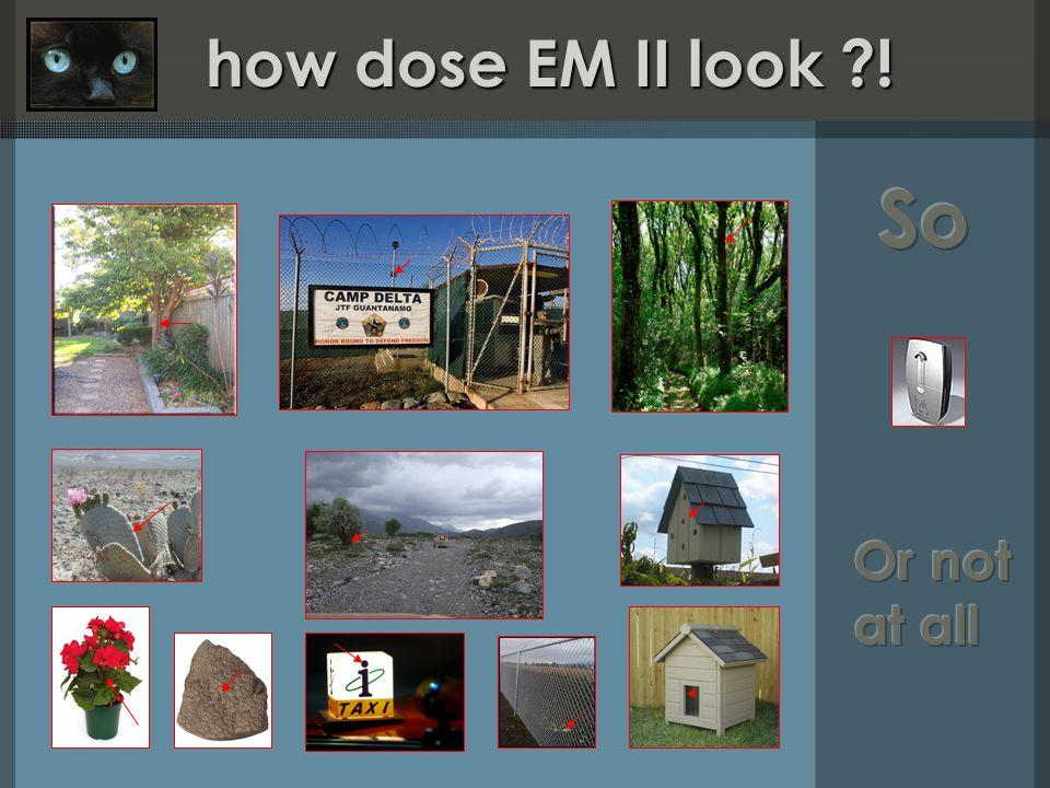 how dose EM II look ! how dose EM II look !