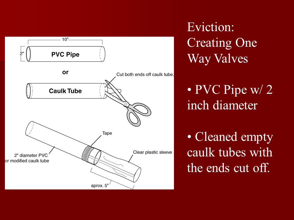 Eviction: Creating One Way Valves PVC Pipe w/ 2 inch diameter Cleaned empty caulk tubes with the ends cut off.
