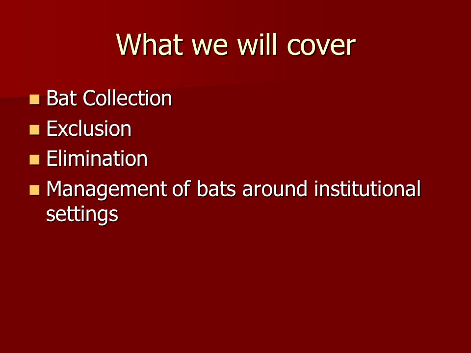 What we will cover Bat Collection Bat Collection Exclusion Exclusion Elimination Elimination Management of bats around institutional settings Manageme